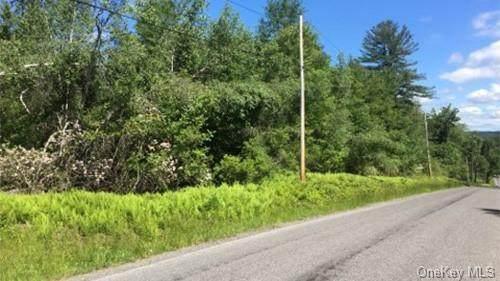 Lot 11.15 Hilltop Road - Photo 1