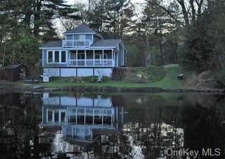 20 4th Avenue, Rhinebeck, NY 12572 (MLS #H6086572) :: McAteer & Will Estates   Keller Williams Real Estate