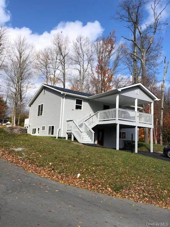 74 Park Avenue, Monticello, NY 12701 (MLS #H6086852) :: William Raveis Baer & McIntosh