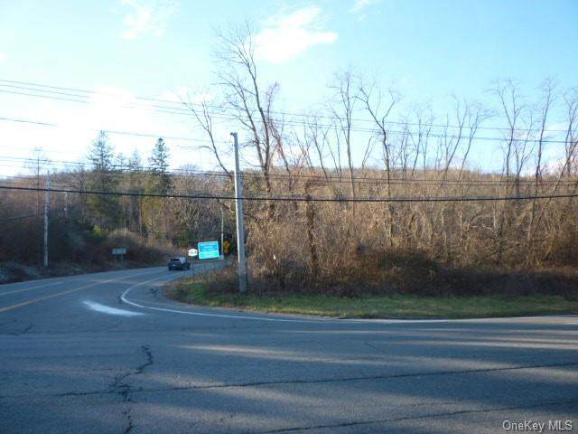 Route 164, Patterson, NY 12563 (MLS #H6087040) :: Keller Williams Points North - Team Galligan
