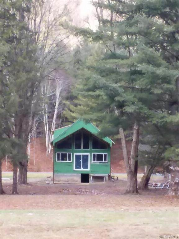 5798 State Highway 30, East Branch, NY 13756 (MLS #H6087405) :: Keller Williams Points North - Team Galligan