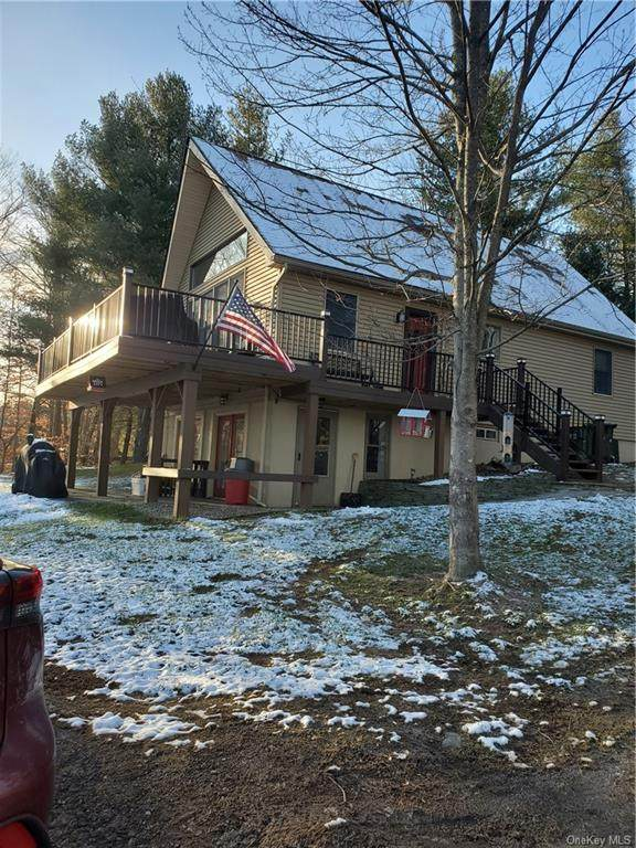 125 Spook Hole Road, Ellenville, NY 12428 (MLS #H6087454) :: Mark Seiden Real Estate Team
