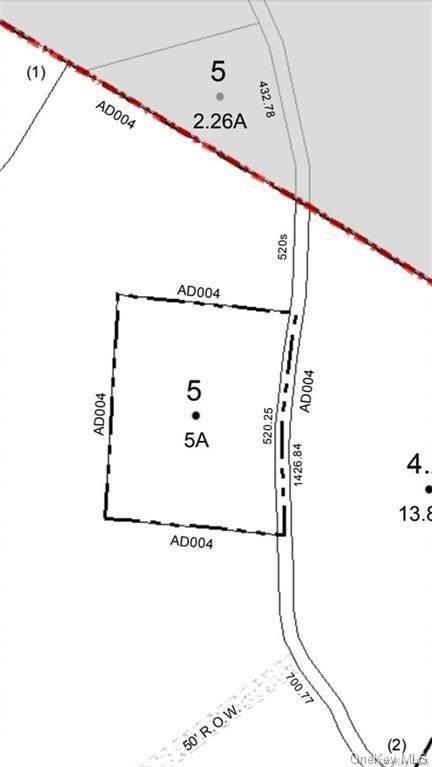 331 Mud Pond Road, Livingston Manor, NY 12758 (MLS #H6089947) :: Kevin Kalyan Realty, Inc.