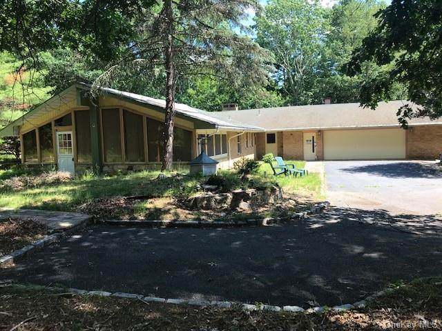 125 Mapes Road, Barryville, NY 12719 (MLS #H6090136) :: William Raveis Baer & McIntosh