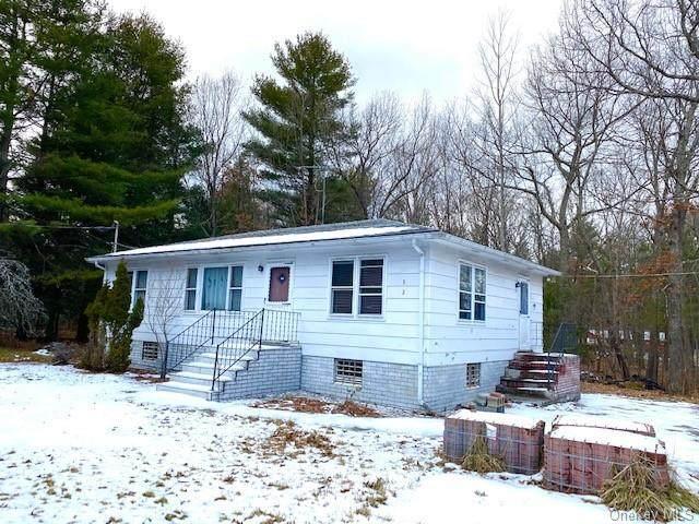 32 Anna Drive, Glen Spey, NY 12737 (MLS #H6091175) :: Mark Seiden Real Estate Team