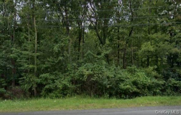 731 Wurtsboro Mtn Road - Photo 1