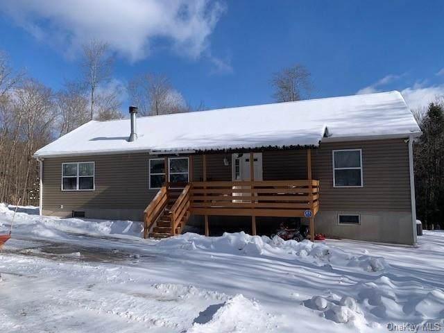 52 Turkey Hollow Lane, Livingston Manor, NY 12758 (MLS #H6093543) :: Mark Seiden Real Estate Team