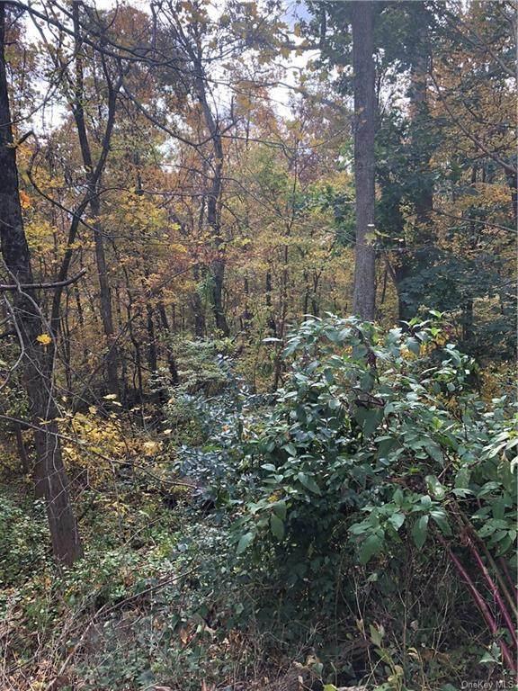 21 River Road, Brewster, NY 10509 (MLS #H6094864) :: McAteer & Will Estates | Keller Williams Real Estate
