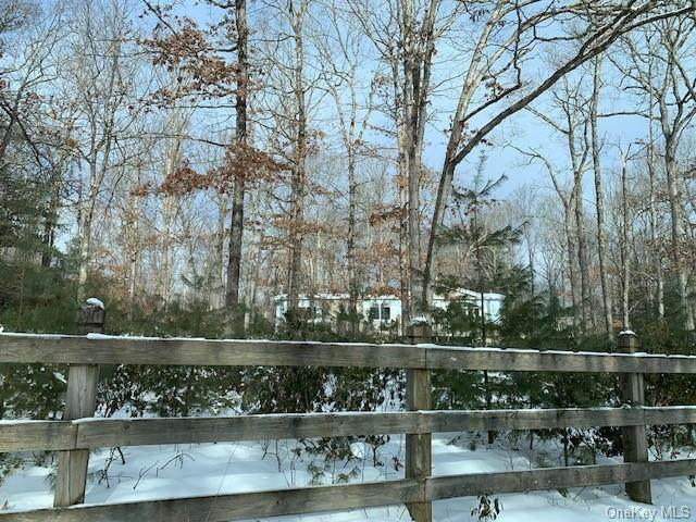 1124 County Road 23, Narrowsburg, NY 12764 (MLS #H6097023) :: McAteer & Will Estates | Keller Williams Real Estate