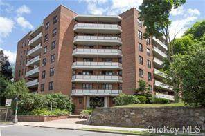 325 King 6L, Port Chester, NY 10573 (MLS #H6098420) :: William Raveis Baer & McIntosh