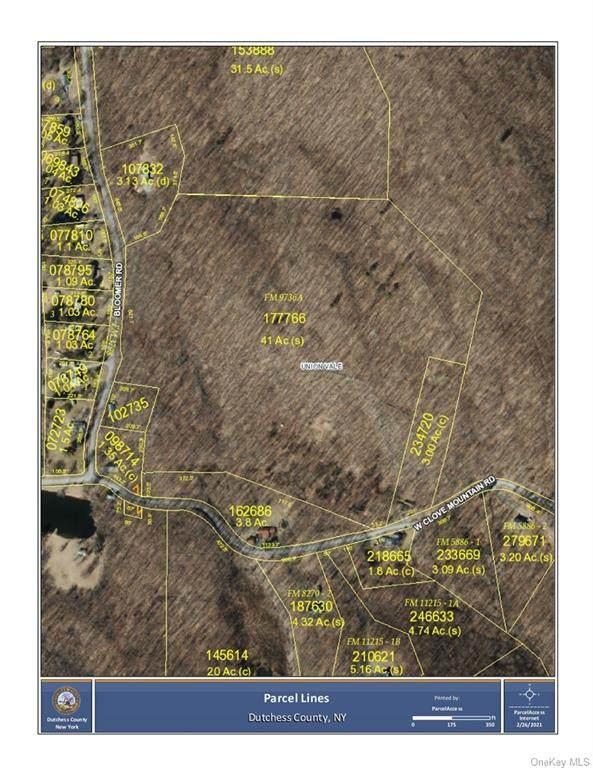 Bloomer Road, Lagrangeville, NY 12540 (MLS #H6098630) :: Signature Premier Properties
