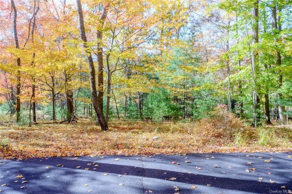 Otis Road - Photo 1