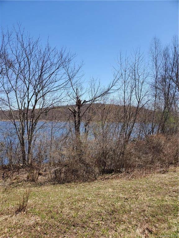 Shore Road, Swan Lake, NY 12783 (MLS #H6099060) :: Signature Premier Properties