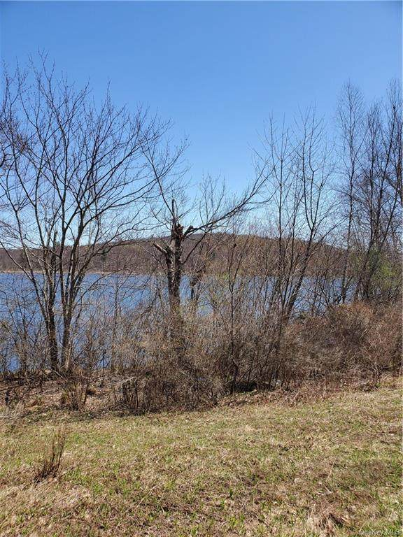 Shore Road, Swan Lake, NY 12783 (MLS #H6099060) :: Barbara Carter Team