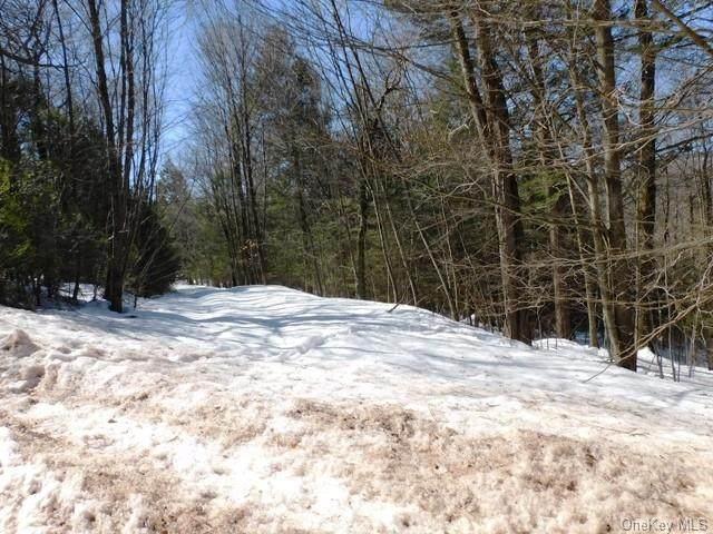 Brookview Drive, Liberty, NY 12754 (MLS #H6100194) :: Signature Premier Properties