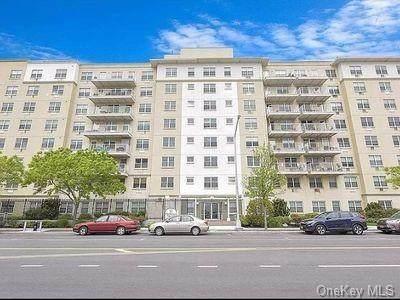 7914 Rockaway Beach Boulevard 2R, Rockaway Beach, NY 11693 (MLS #H6101060) :: Carollo Real Estate
