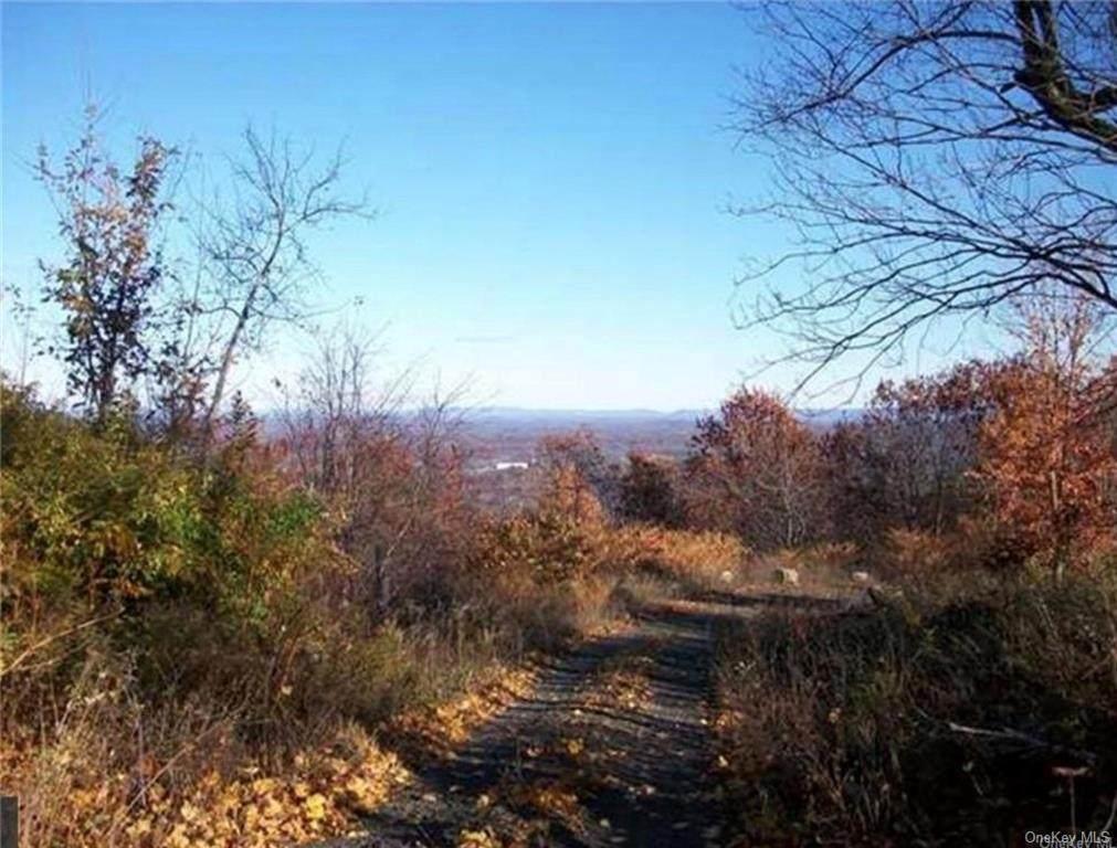 338 Mountain Road - Photo 1