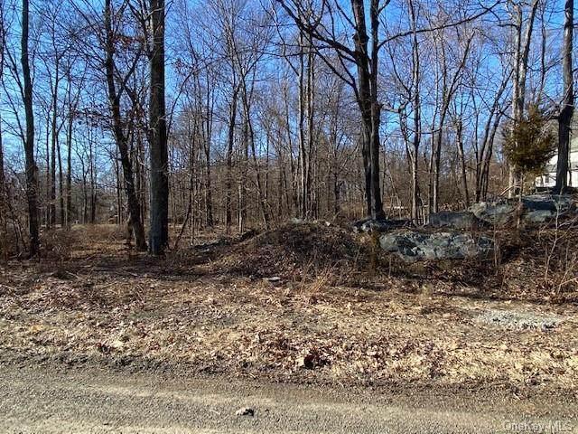 15 Appalachian E, Hopewell Junction, NY 12533 (MLS #H6102112) :: The Home Team
