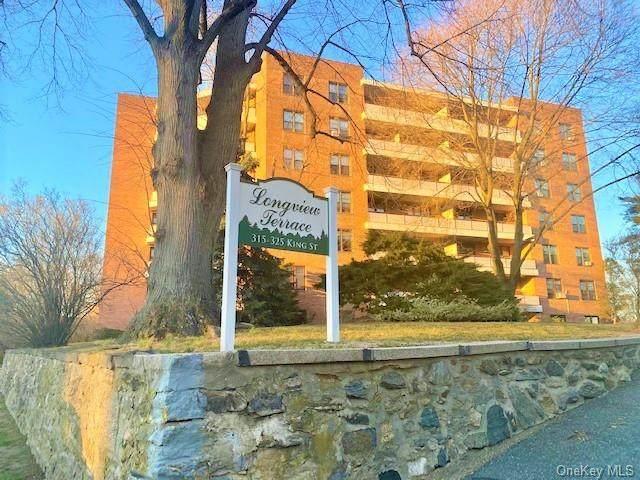 315 King Street 6E, Port Chester, NY 10573 (MLS #H6102194) :: Howard Hanna | Rand Realty