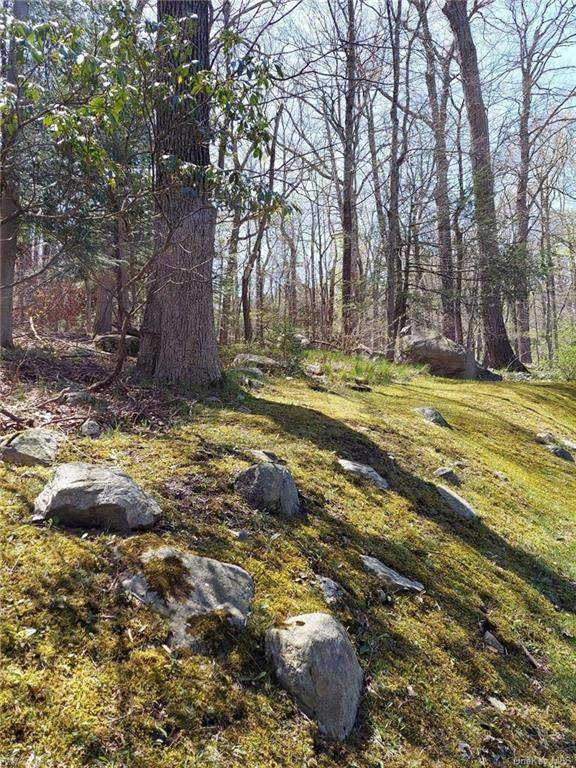 Pine Road & Pepperidge Road, Tuxedo Park, NY 10987 (MLS #H6104004) :: Signature Premier Properties