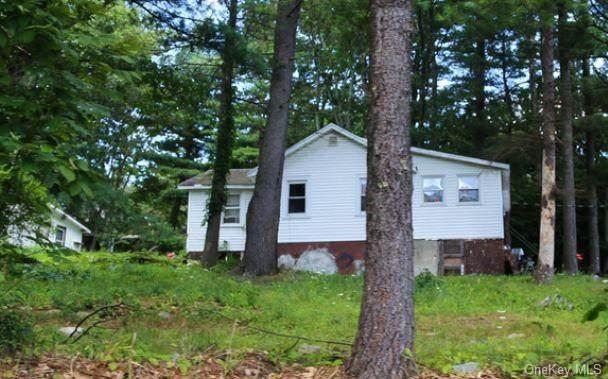 24 Firwood Road N, Wurtsboro, NY 12790 (MLS #H6106005) :: Mark Boyland Real Estate Team