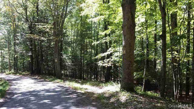 Tempaloni Road, Wurtsboro, NY 12790 (MLS #H6106586) :: Mark Boyland Real Estate Team