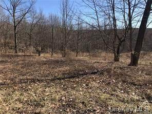 Ferguson Road, Wurtsboro, NY 12790 (MLS #H6106752) :: Mark Boyland Real Estate Team