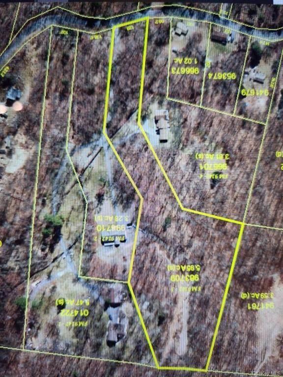 15 Forest Brook Lane, Hyde Park, NY 12538 (MLS #H6106935) :: Signature Premier Properties
