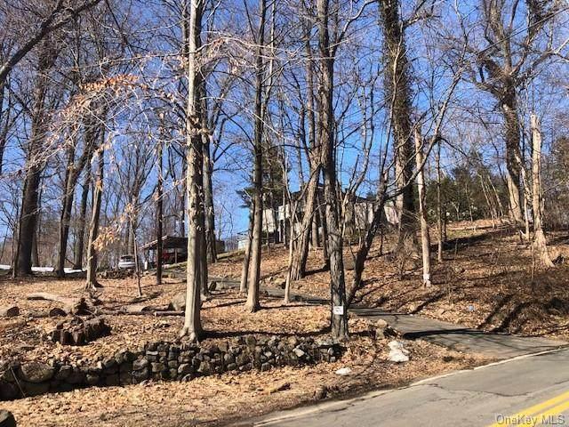 101 Rockland Road, Sparkill, NY 10976 (MLS #H6110246) :: RE/MAX RoNIN