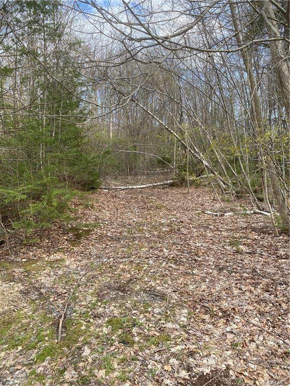 Lakelands Avenue, Greenwood Lake, NY 10925 (MLS #H6110428) :: RE/MAX RoNIN
