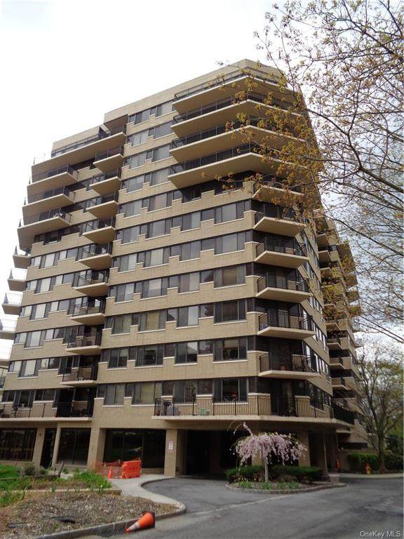 25 Rockledge Avenue #206, White Plains, NY 10601 (MLS #H6110444) :: Cronin & Company Real Estate
