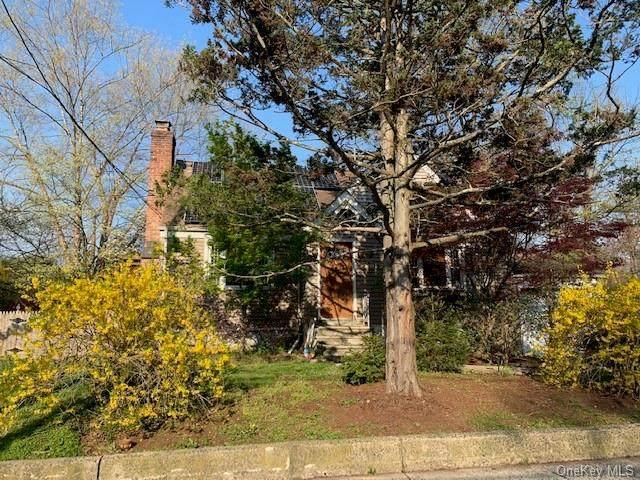 181 Ehrhardt Road, Pearl River, NY 10965 (MLS #H6110653) :: Signature Premier Properties