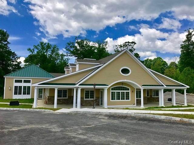 235P Hudson View Terrace, Hyde Park, NY 12538 (MLS #H6111008) :: McAteer & Will Estates | Keller Williams Real Estate