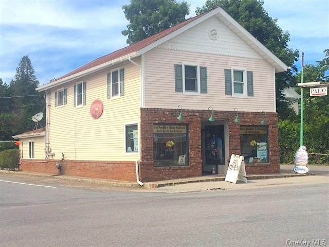 3699 Route 44, Millbrook, NY 12545 (MLS #H6111860) :: Signature Premier Properties