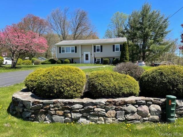 52 Vineland Road, Mahopac, NY 10541 (MLS #H6112964) :: Signature Premier Properties