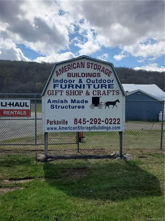 206 Service Road, Parksville, NY 12768 (MLS #H6113050) :: Cronin & Company Real Estate