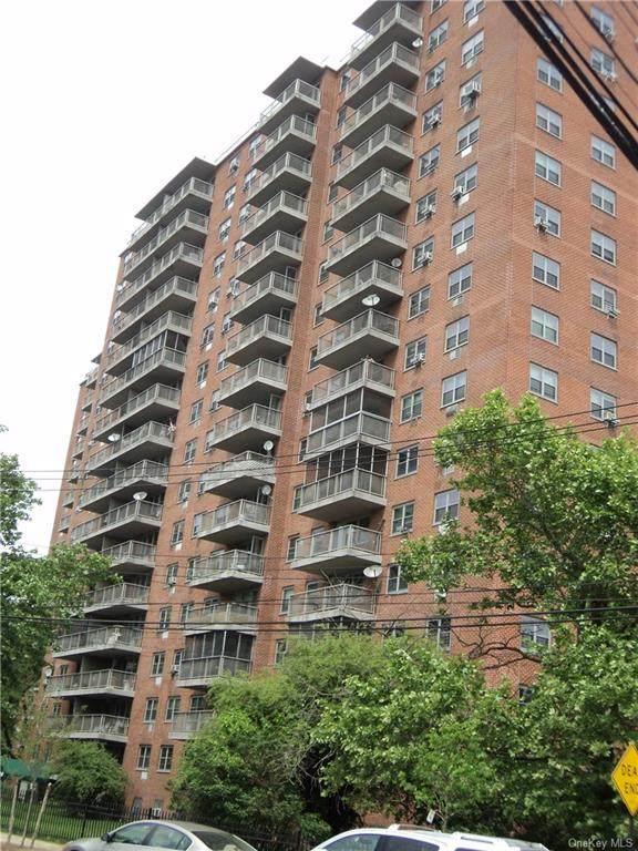 3410 De Reimer Avenue 12D, Bronx, NY 10475 (MLS #H6113101) :: Howard Hanna | Rand Realty