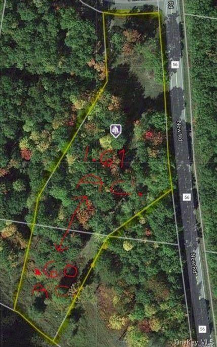 Pine Lake Drive, Wurtsboro, NY 12790 (MLS #H6113445) :: Shalini Schetty Team