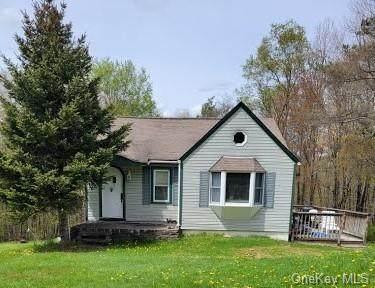 57 Budd Road, Woodbourne, NY 12788 (MLS #H6113782) :: Mark Boyland Real Estate Team
