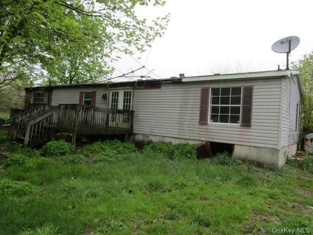229 Awosting Road, Pine Bush, NY 12566 (MLS #H6114087) :: Shalini Schetty Team
