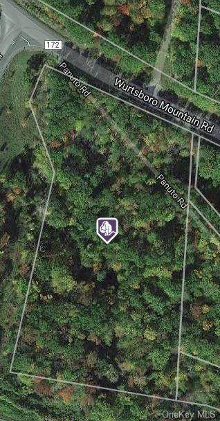 27 Wurtsboro Mountain Road, Wurtsboro, NY 12790 (MLS #H6114124) :: Corcoran Baer & McIntosh