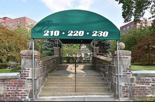 210 Pelham Road 5H, New Rochelle, NY 10805 (MLS #H6114235) :: Carollo Real Estate