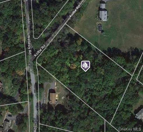Kolbe Road, Bloomingburg, NY 12721 (MLS #H6114671) :: Shalini Schetty Team