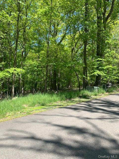 1 Red Oak Ridge Drive - Photo 1