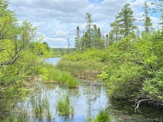 Highland Lake Road - Photo 1
