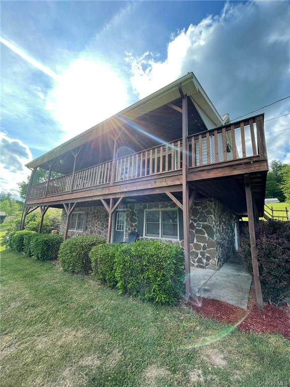 163 Moore Hill Road, Grahamsville, NY 12740 (MLS #H6117593) :: Carollo Real Estate