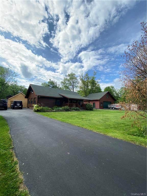 780 Dahlia Road, Livingston Manor, NY 12758 (MLS #H6119966) :: Cronin & Company Real Estate