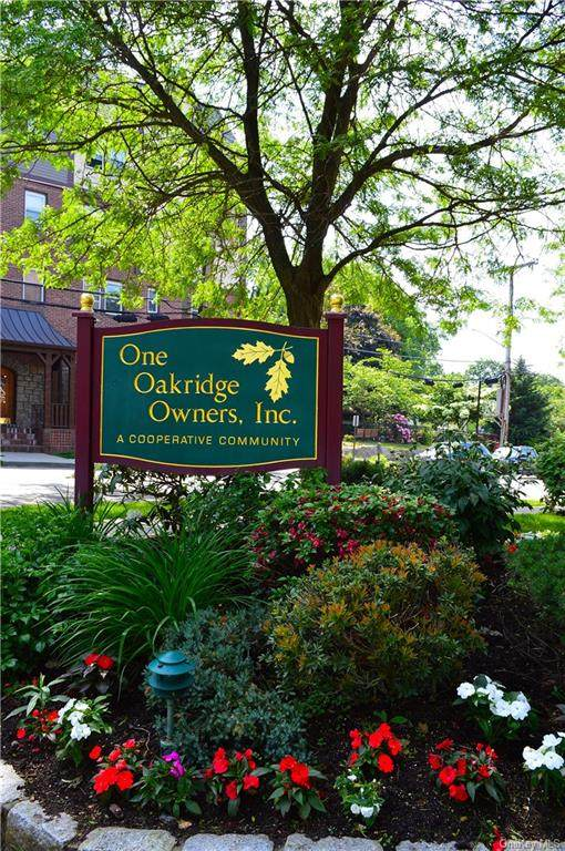 1 Oakridge Place 5K, Eastchester, NY 10709 (MLS #H6120485) :: Nicole Burke, MBA | Charles Rutenberg Realty