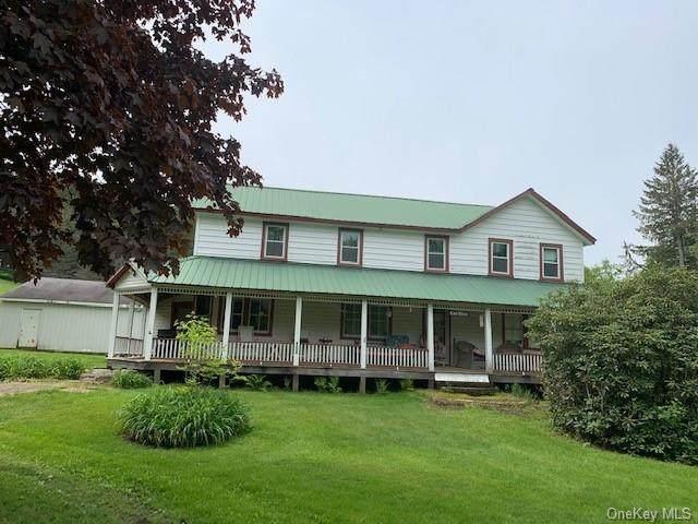 2018 Beaverkill Road, Livingston Manor, NY 12758 (MLS #H6120692) :: Cronin & Company Real Estate