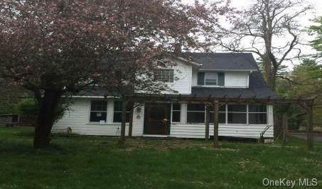 4737 State Route 213, Olivebridge, NY 12461 (MLS #H6121162) :: Cronin & Company Real Estate